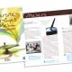 Programme 56 pages pour une Université pour tous - Ville de Melun